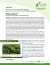 Introduction to the Ecology and Strategies for Tropical Forest Restoration in Human-Modified Landscapes