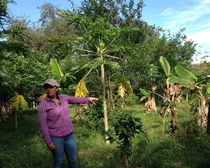ODIELCA SOLÍS on her farm in Panama