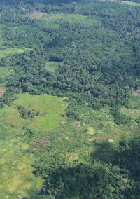 The mosaic of land uses in Ucayali (Peruvian Amazon).