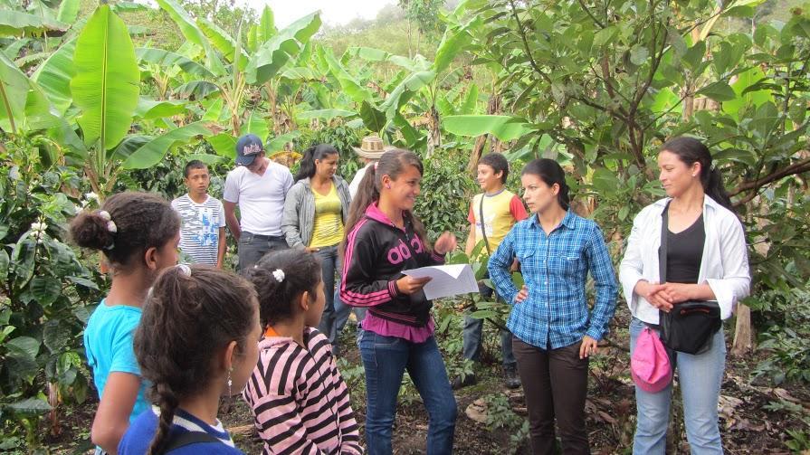 Restoring Colombian Andean Landscapes