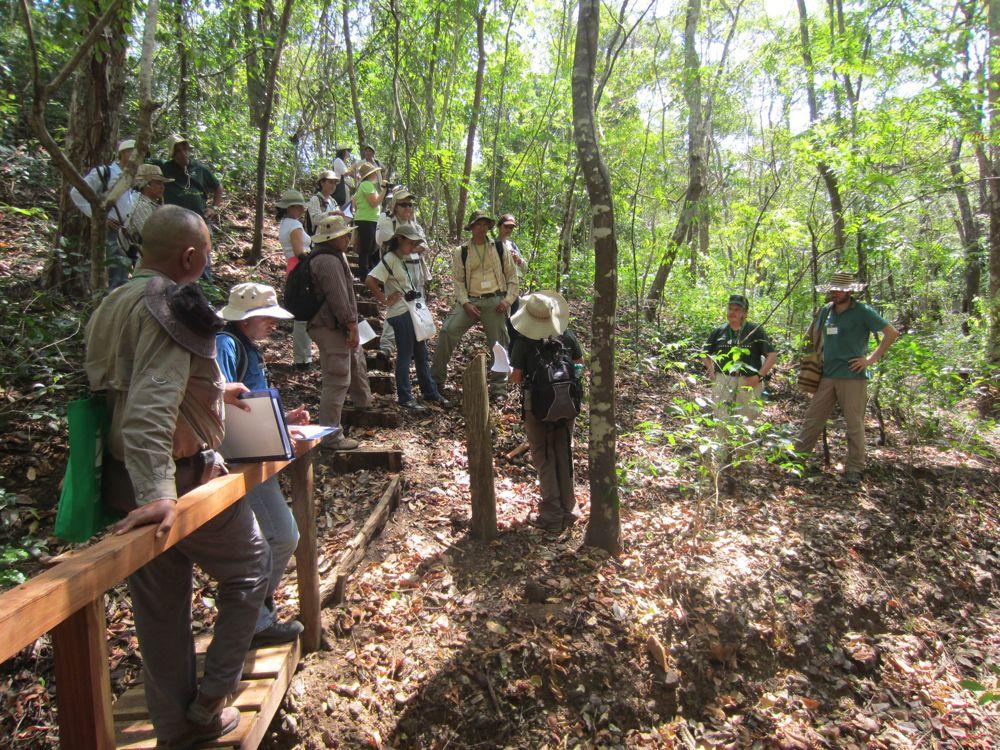 Participants in ELTI's focal training site in the tropical dry forest of Panama's Azuero Peninsula
