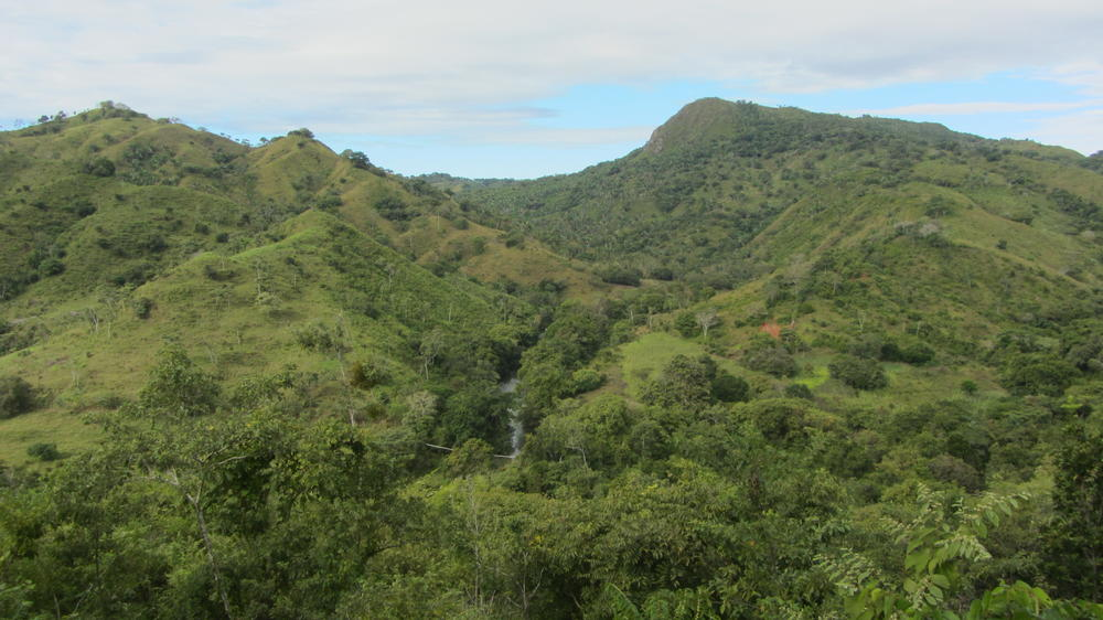 "The planned ""El Peñon Forest Reserve"""