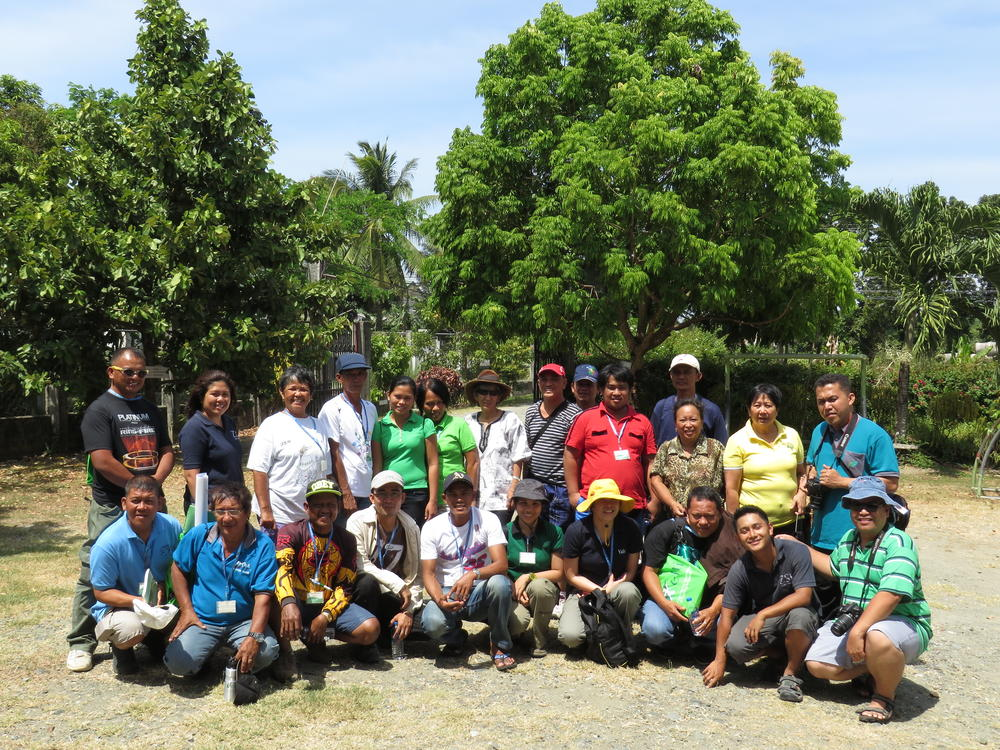 Mangrove Rehabilitation