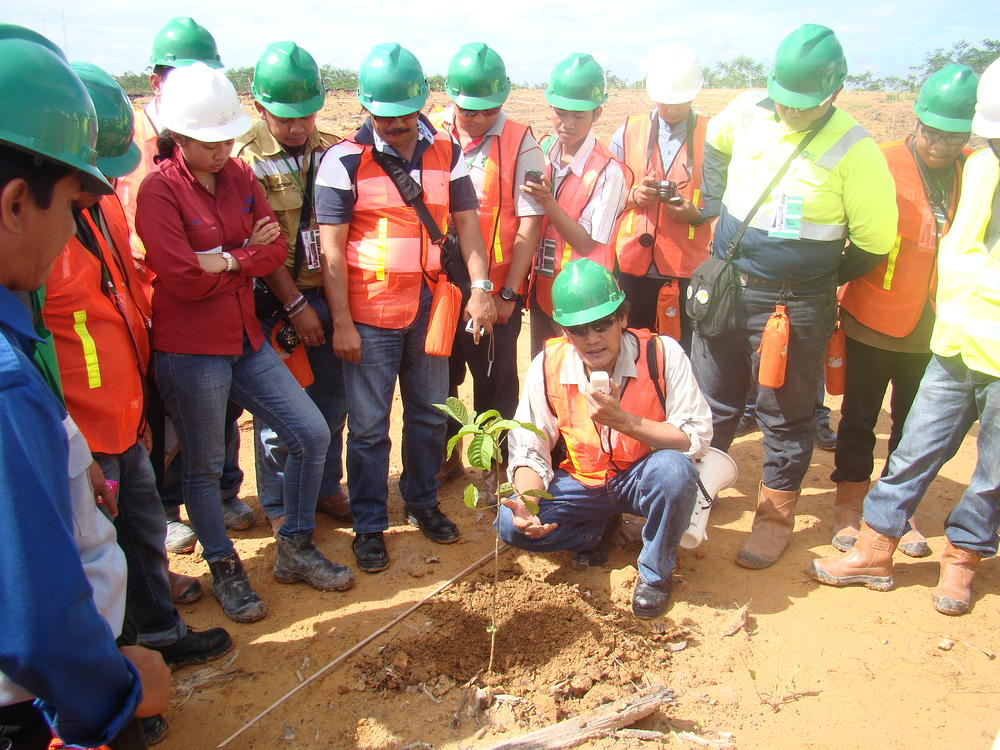 Dr. Setiadi explaining proper tree planting on mined areas