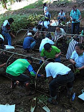 Rainforestation Trainer's Training - April