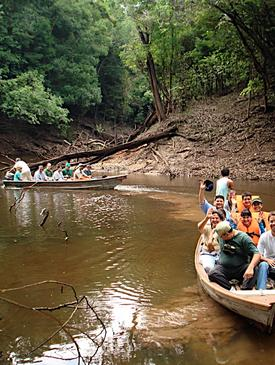 Ecological Principles for Decision Making in the Amazon