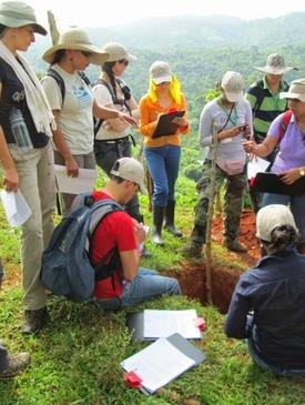 Ecosystem Services and Tropical Forest Restoration Aug 2013