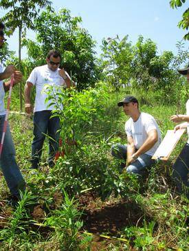 Monitoring of Areas Undergoing Ecological Restoration Recife
