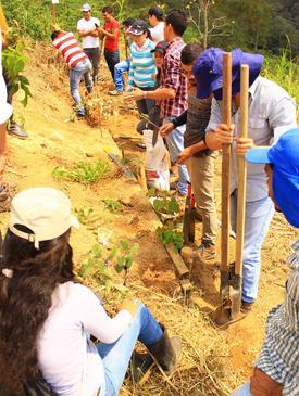 Ecological Restoration of Severely Eroded Lands in ...