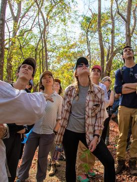 Students learn how to identify common tropical dry forest species.